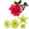 JEM Cutters Large Rose Cutters 4pcs