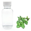 Peppermint Essence Oil Based Flavouring 20ml