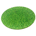 Round Grass Print Masonite Cake Board 10 Inch