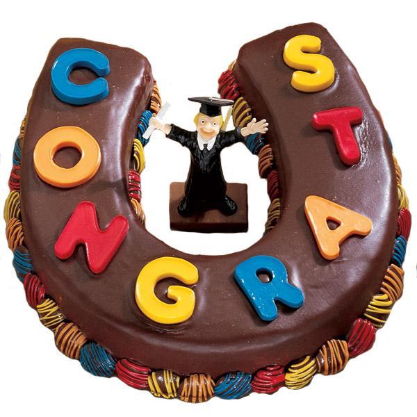 Wilton Horseshoe Cake Ideas
